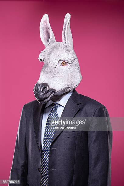 Donkey businessman