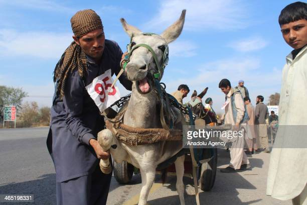 Donkey cart race is the traditional sports of Gujar Khan and every year such events held in the area and prizes are distributed among the winners in...