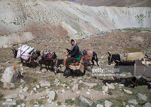 Donkeys convoy in the pamir mountains big pamir wakhan Afghanistan on August 11 2016 in Wakhan Afghanistan