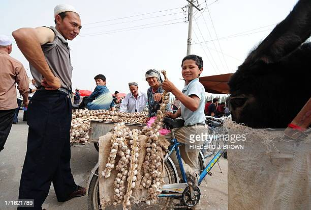 A donkey's mouth is covered up as vendors sell their braids of garlic at the Sunday Bazaar in Kashgar on June 15 2008 in northwest China's Xinjiang...
