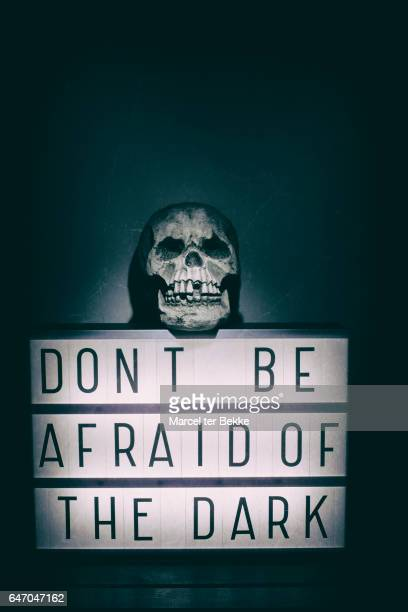'Don't be afraid of the dark'