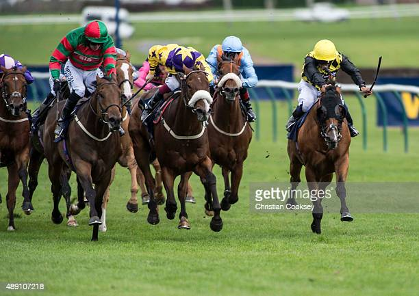 Don't Touch 2nd left Red and Green silks ridden by Tony Hamilton leads the field in the William Hill Ayr Gold Cup on September 19 2015 in Ayr Scotland