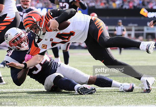 Dont'a Hightower of the New England Patriots sacks Andy Dalton of the Cincinnati Bengals during the third quater of the game at Gillette Stadium on...