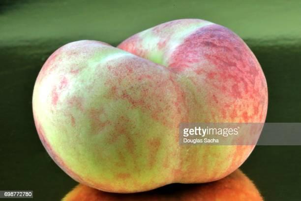 Donut Peach (prunus persica)