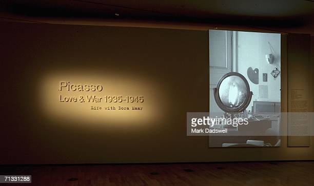 Dora Maar's work chronicling the creation of Guernica by Picasso at the Picasso Love War Exhibition at the National Gallery of Victoria June 29 2006...