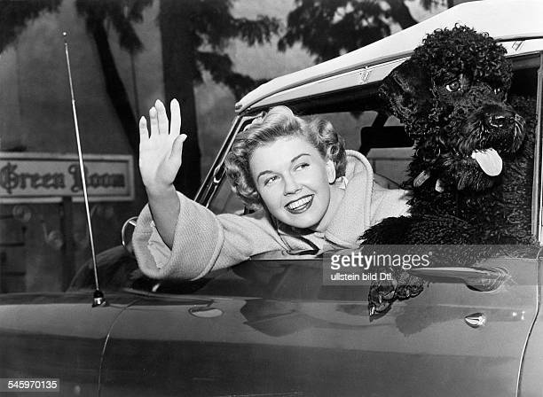 Doris Day*Actress USAwith a poodle in her car about 1955