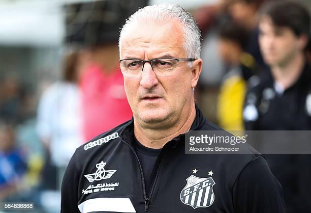 Dorival Junior head coach of Cruzeiro in action during the match between Santos and Cruzeiro for the Brazilian Series A 2016 at Vila Belmiro stadium...