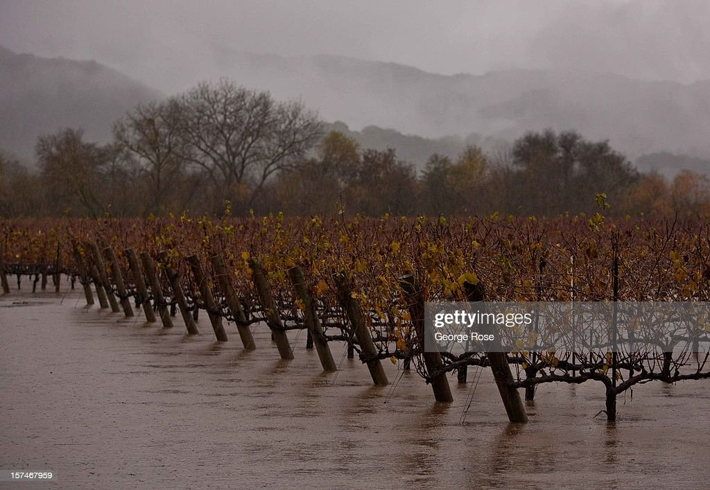 Dormant vineyards along Mendocino County's Russian River are flooded during a five-day storm December 2, 2012, in Hopland, California. More than a 18 inches of rain has fallen in California's Wine Country during the past five days. Forecasters are calling it 'The Pineapple Express,' or a 'river of moisture.'