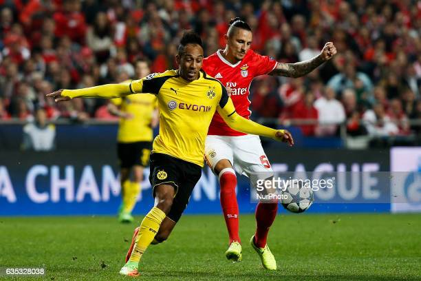 Dortmund's forward Aubameyang vies for the ball with Benfica's midfielder Ljubomir Fejsa during Champions League 2016/17 match between SL Benfica vs...