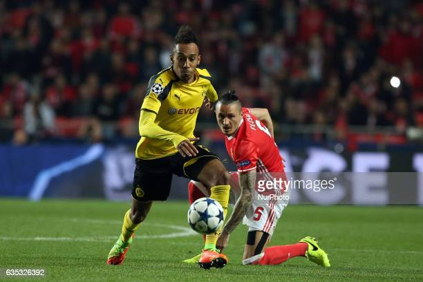 Dortmund's forward PierreEmerick Aubameyang fights for the ball with Benfica's midfielder Ljubomir Fejsa during the UEFA Champions League round of 16...