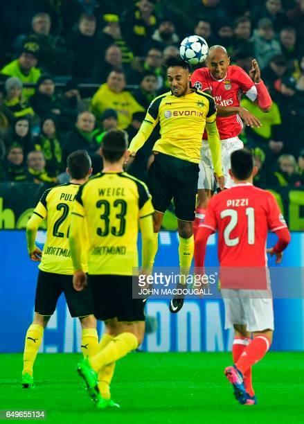 Dortmund's Gabonese forward PierreEmerick Aubameyang and Benfica's Brazilian defender Luisao vie for the ball during the UEFA Champions League Round...