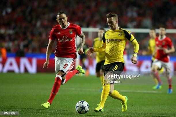 Dortmund's midfielder Marco Reus vies with Benfica's midfielder Ljubomir Fejsa during the UEFA Champions League round of 16 first leg football match...