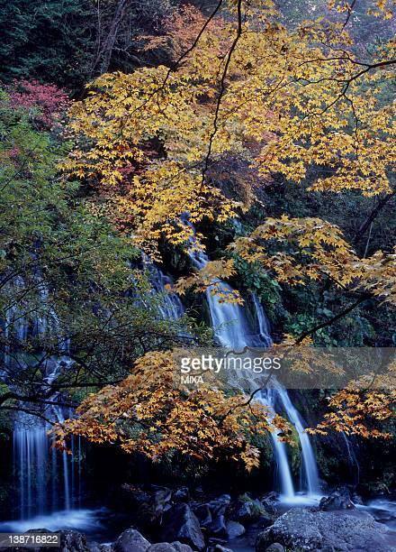Doryu Waterfall and Kawamata Higashizawa Valley, Hokuto, Yamanashi, Japan