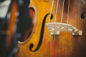 Double bass bridge and string close up, selective focus on chords and colorful background