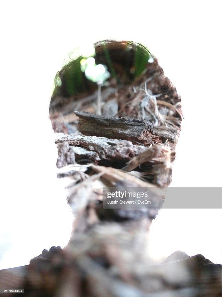 Double Exposure Of Man And Wooden Logs
