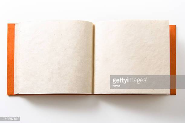 Double page album