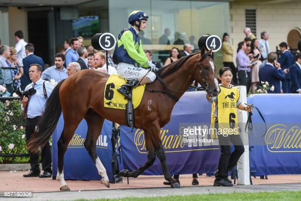 Doubt I'm Dreaming ridden by Jamie Mott heads to the barrier before the Ascend Sales Valley Pearl at Moonee Valley Racecourse on March 24 2017 in...