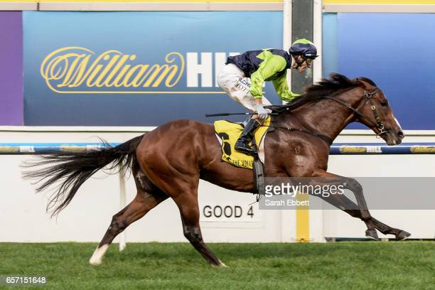 Doubt I'm Dreaming ridden by Jamie Mott wins the Ascend Sales Valley Pearl at Moonee Valley Racecourse on March 24 2017 in Moonee Ponds Australia