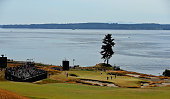 A douglas fir tree is seen behind the 15th green during a practice round prior to the start of the 115th US Open Championship at Chambers Bay on June...