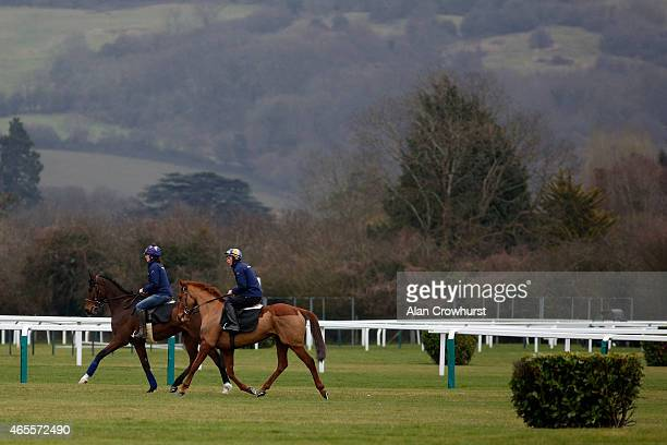 Douvan and Annie Power on the gallops at Cheltenham racecourse on March 08 2015 in Cheltenham England