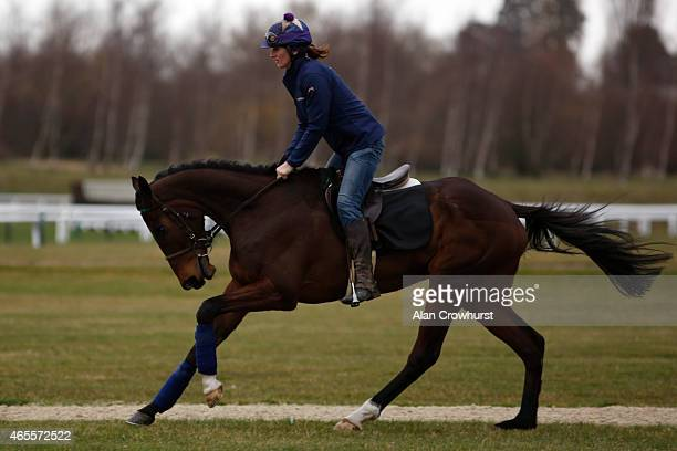 Douvan on the gallops at Cheltenham racecourse on March 08 2015 in Cheltenham England