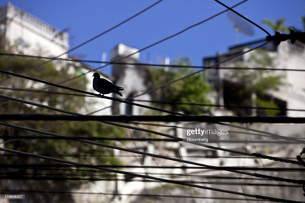 A dove perches on electricity cables in Rio de Janeiro, Brazil, on Monday, July 15, 2013. Energy developers in Brazil will bid for contracts to sell electricity Dec. 13 from plants due to go into operation in five years, including a 700-megawatt hydropower project in the Amazon. Photographer: Dado Galdieri/Bloomberg via Getty Images