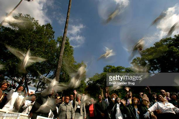 Doves are released following a memorial service attended by citizens and dignitaries for civil rights pioneer Rosa Parks at First AME Church in Los...