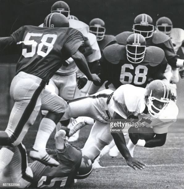 Down for the count Denver Bronco running back Larry Canada No 35 makes a first down before getting tackled in the annual Bronco summer camp scrimmage...