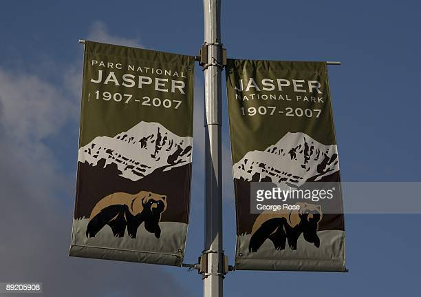 A downtown centennial banner featuring a grizzly bear is seen in this 2009 Jasper National Park Canada summer morning photo
