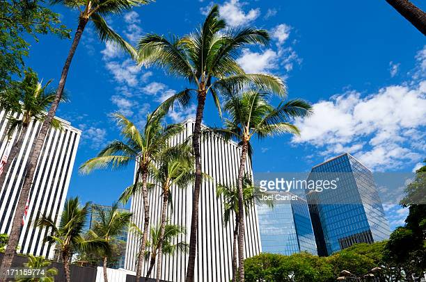 Downtown Honolulu with palm trees and blue sky