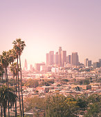 A view of Downtown Los Angeles California with some palm trees in the foreground. Los Angeles city hall can be seen to the left. The residential areas of East LA can be seen in the ground.
