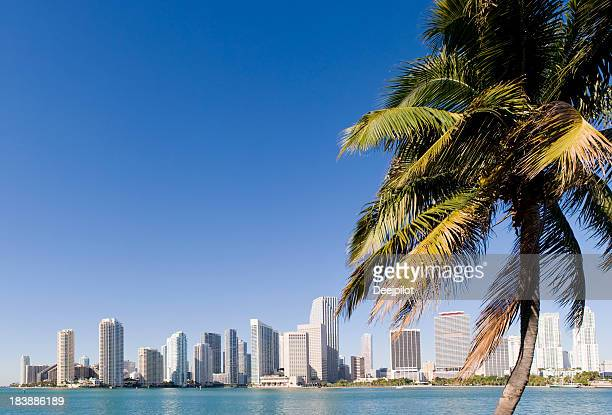 Downtown Miami City Skyline in the USA