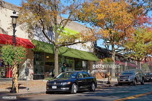 Downtown shops with autumn trees