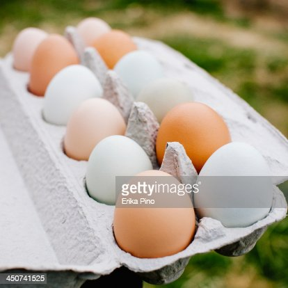 Dozen Eggs Stock Photos and Pictures | Getty Images