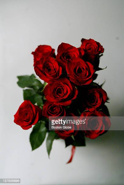 A dozen red roses for Valentine's Day photographed in The Boston Globe's photo studio on Feb 4 2004
