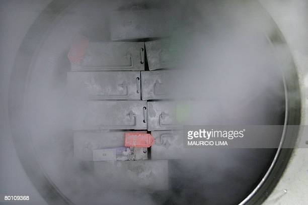 Dozens of packages containing frozen embryonic stem cells remain in liquid nitrogen in a laboratory at the Univestiry of Sao Paulo's human genome...