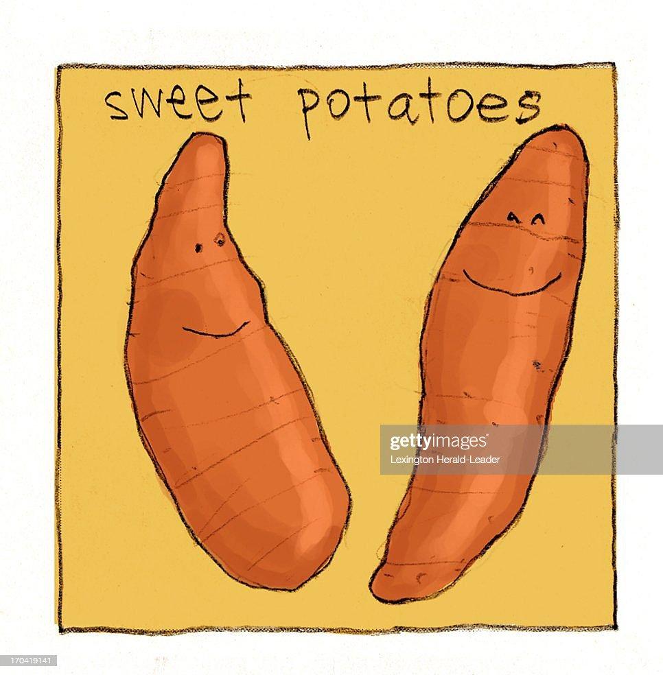 USA - 2013 300 dpi Chris Ware illustration of sweet potatoes.