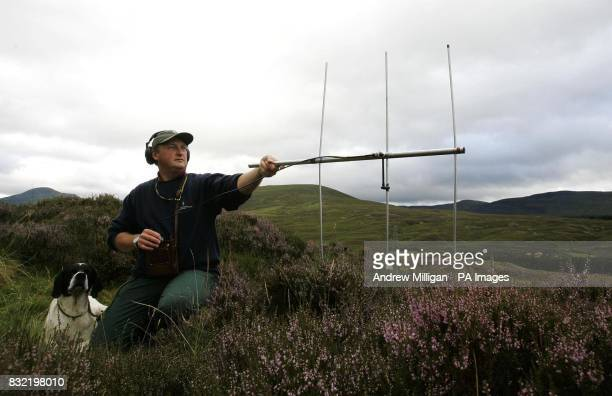 Dr Adam Smith from the Game Conservancy Trust with his telemetry kit used to track tagged red grouse on the Drumochter moor during a photocall...
