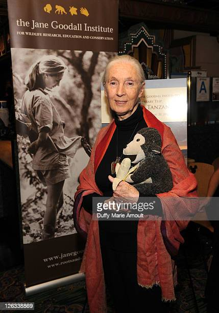 Dr Jane Goodall attends 2011 Jane Goodall Global Leadership Awards at the El Capitan Theatre on September 24 2011 in Hollywood California