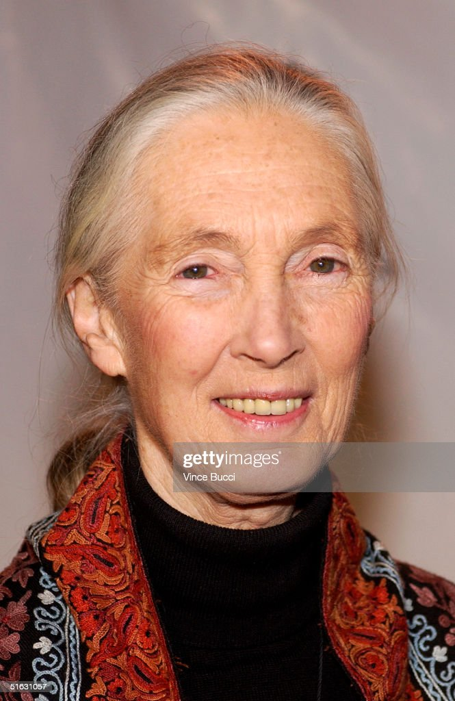 Dr. Jane Goodall attends the 2nd Annual Guardian Awards fundraiser hosted by the In Defense of Animals organization at Paramount Studios October 30, 2004 in Hollywood, California.