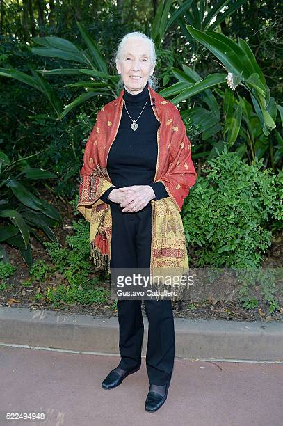 Dr Jane Goodall poses at a reception in honor of Disney Conservation Funds 20th Anniversary during Walt Disney World Awaken Summer event on April 18...