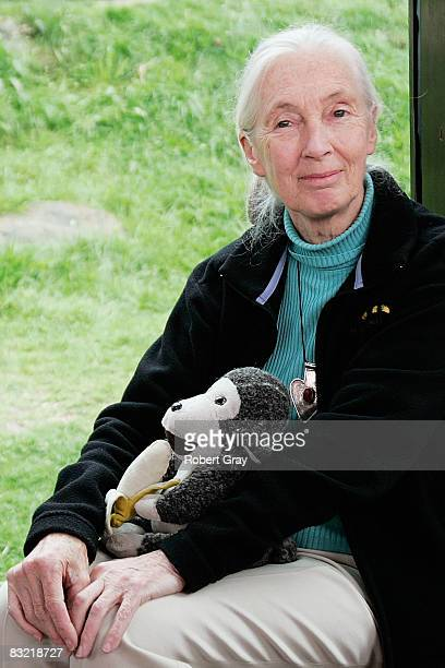 Dr Jane Goodall poses for a photo at Taronga Zoo on October 11 2008 in Sydney Australia Goodall the world renowned primatologist has acknowledged the...