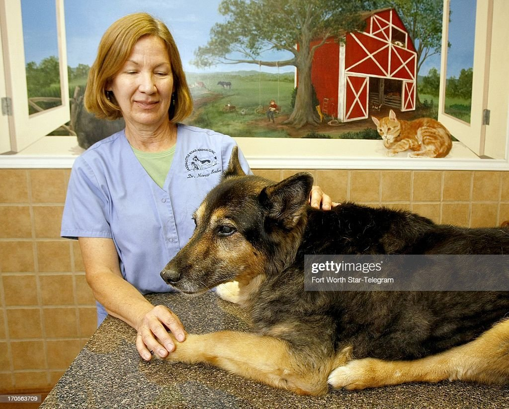 Dr. Nancy Bader poses with 16-year-old German Shepherd Cagney at Jason-Little Road Animal Clinic in Arlington, Texas, June 5, 2013.