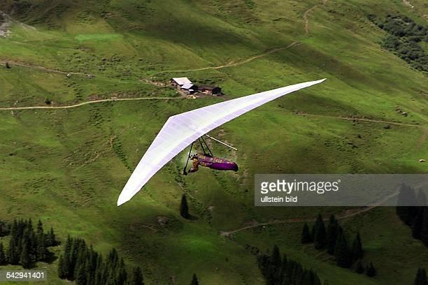 Drachenflieger in den Bergen über einer Almwiese