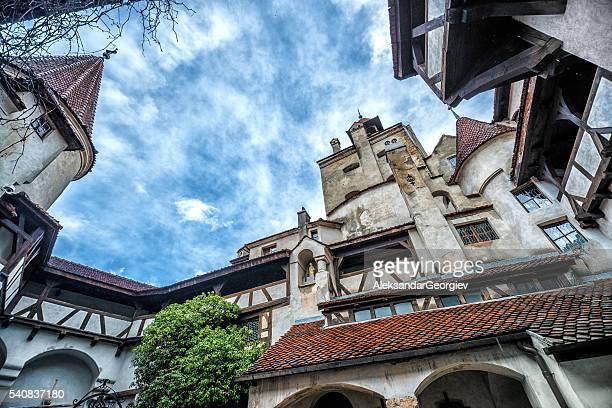Château de Dracula de Fibre, Roumanie