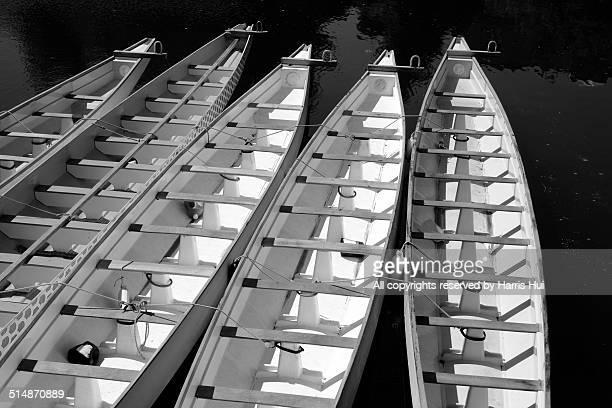 Dragon Boats - Granville Island