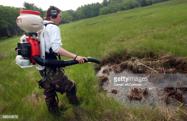 Dragon Mosquito Control employee Devin Hanington sprays a swamp to help curb the mosquito population June 9 2005 in Stratham New Hampshire As the wet...