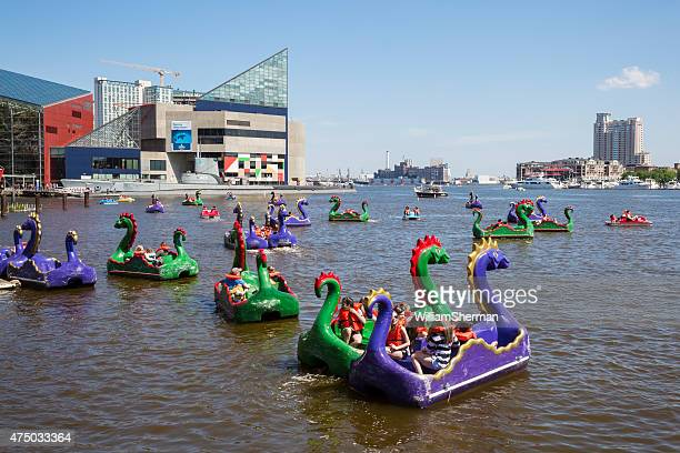 Dragon Paddle Boats on Baltimore Maryland's Inner Harbor