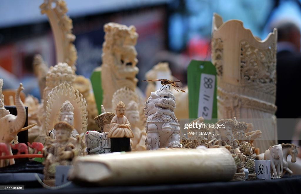 A dragonfly rests on a an artwork made out of ivory during a ceremony at the Times Square in New York on June 19, 2015. The US Fish and Wildlife Service destroyed more than one ton of confiscated illegal ivory in a public show at the Times Square to raise awareness of the elephant poaching and wildlife trafficking crisis. AFP PHOTO/JEWEL SAMAD