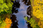 Aerial view of colourful trees and a creek in autumn